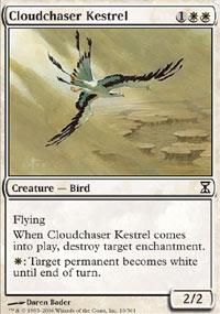 Cloudchaser Kestrel