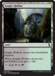 Jungle Hollow